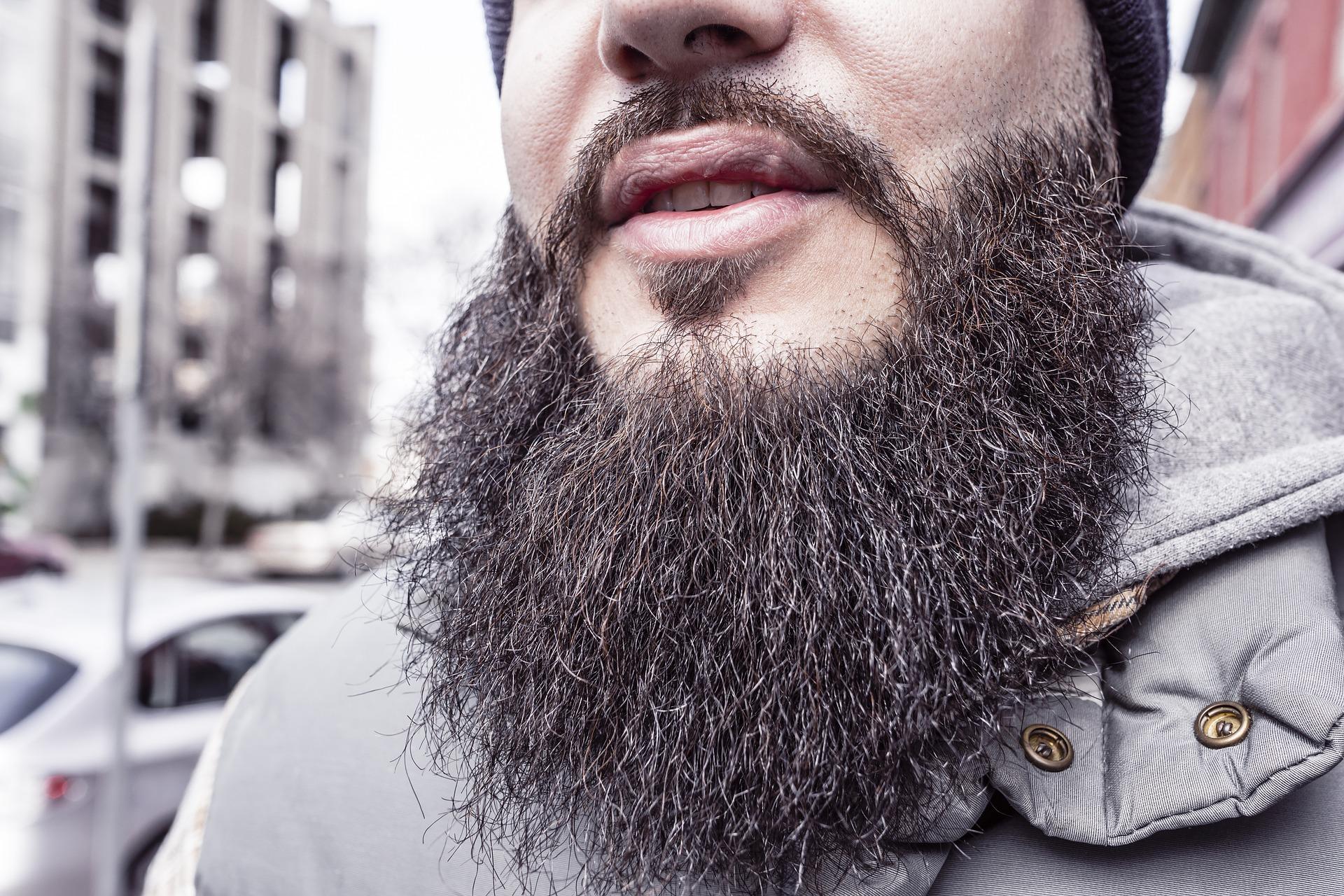beard-698509_1920